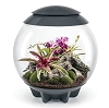 BiOrb Terrariums