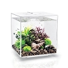 Oase biOrb Cube 30 LED - White