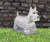 Henri Studios Scottish Terrier