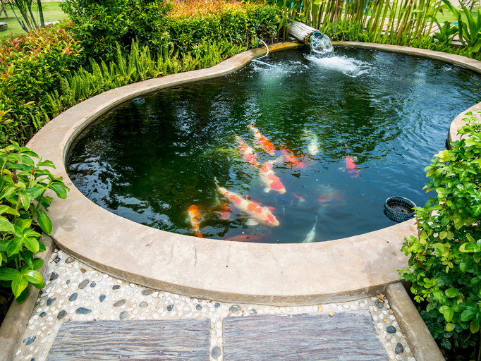 Here's How To Build A KOI Pond Yourself